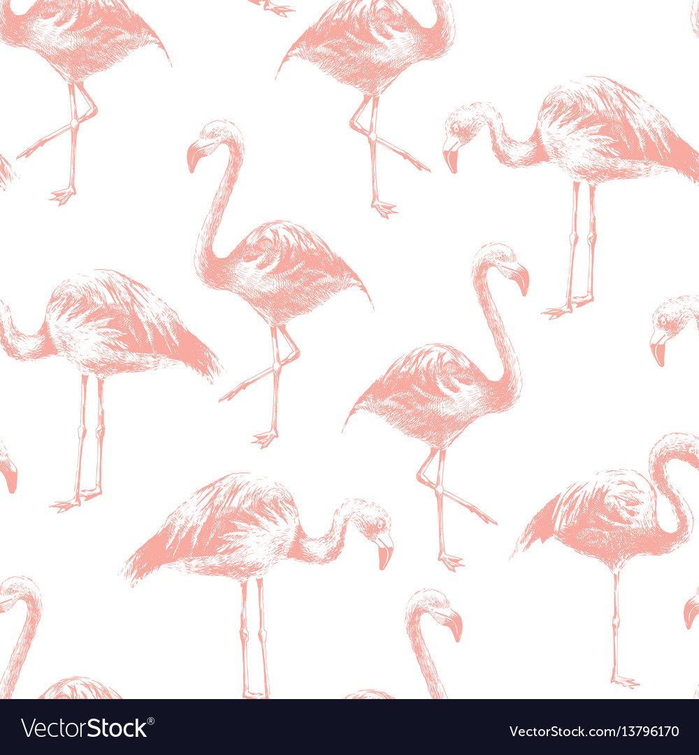 Seamless pattern with hand drawn flamingoes