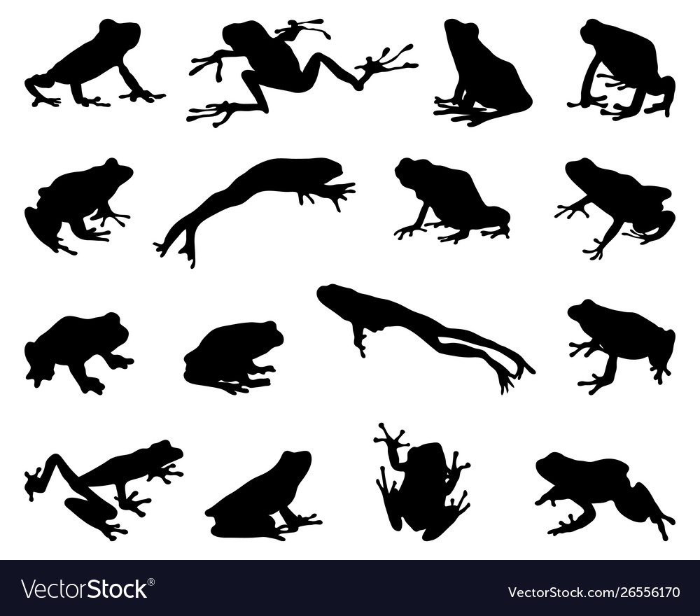 Silhouettes frogs