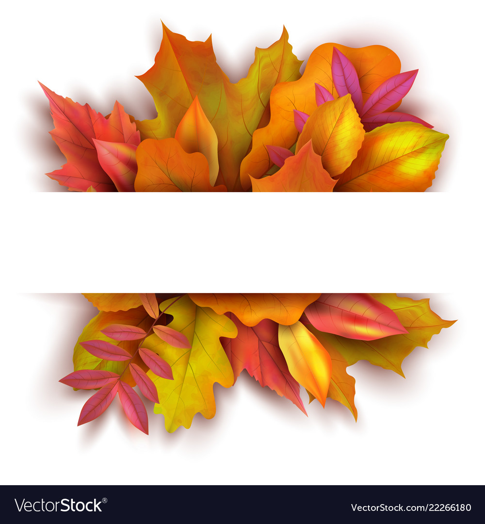 Autumn background with forest fall leaves october