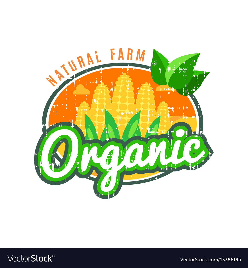 Organic food natural farm with corn logo vector image