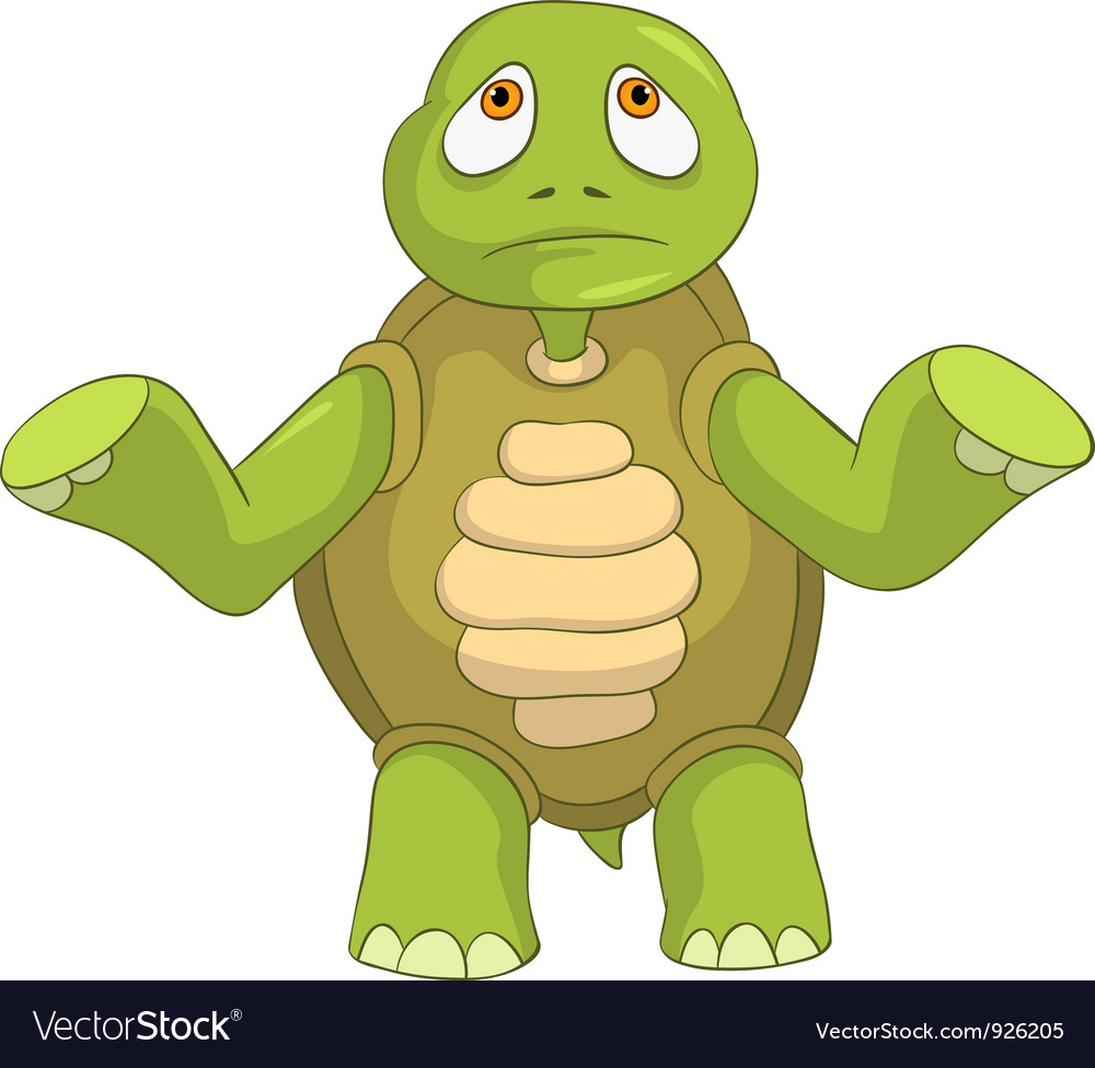 Sad Turtle vector image