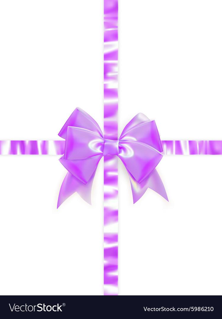 Beautiful bow on white background EPS 10