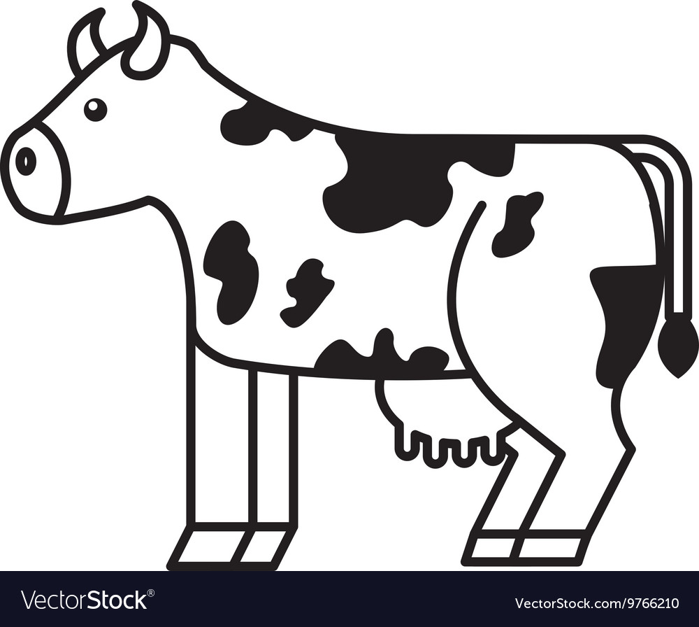 Cow isolated icon design
