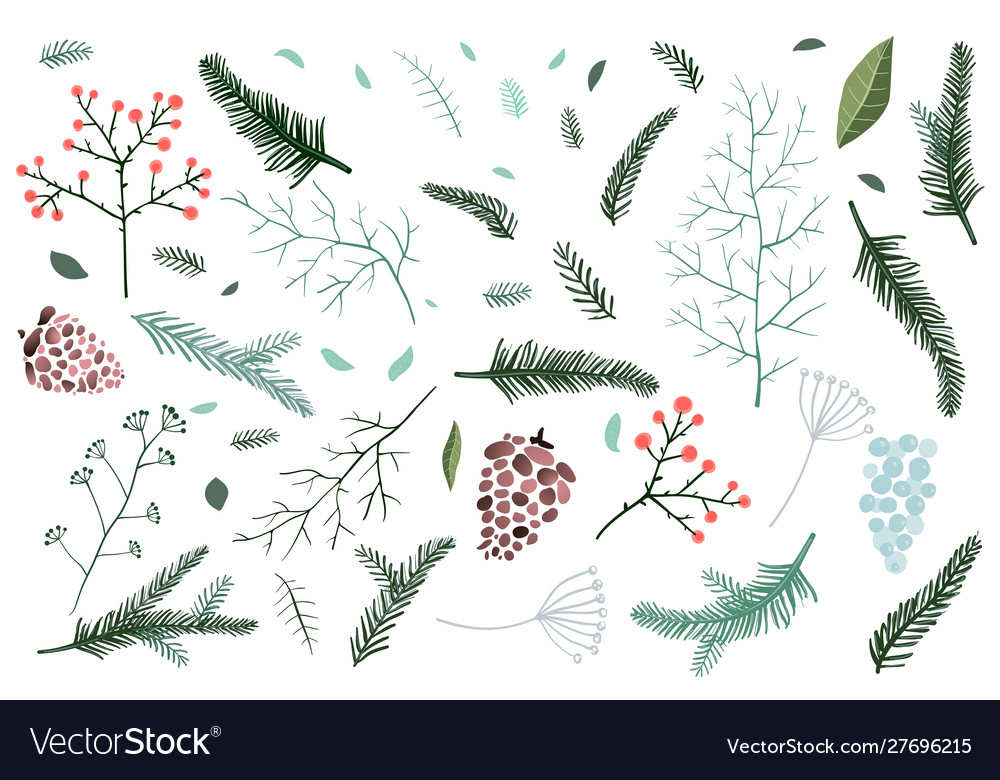 Christmas fir tree and pine branches objects