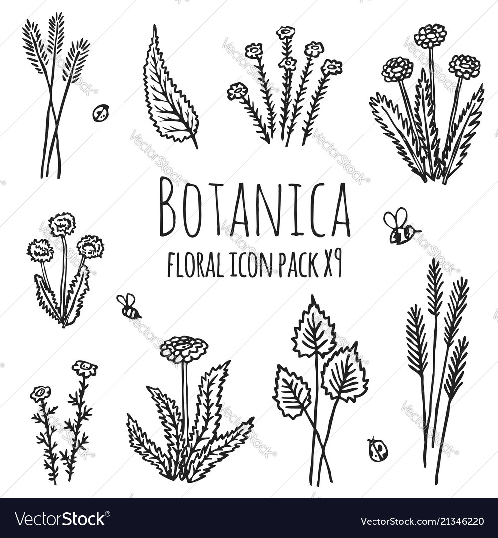 Isolated floral icons