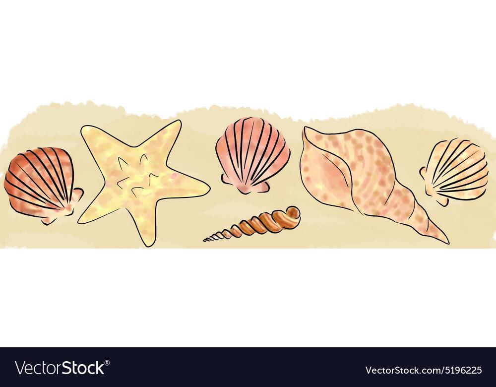 Sand and shells border