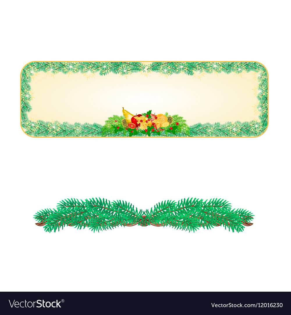 Banner Christmas Spruce with fruit and pine cones vector image
