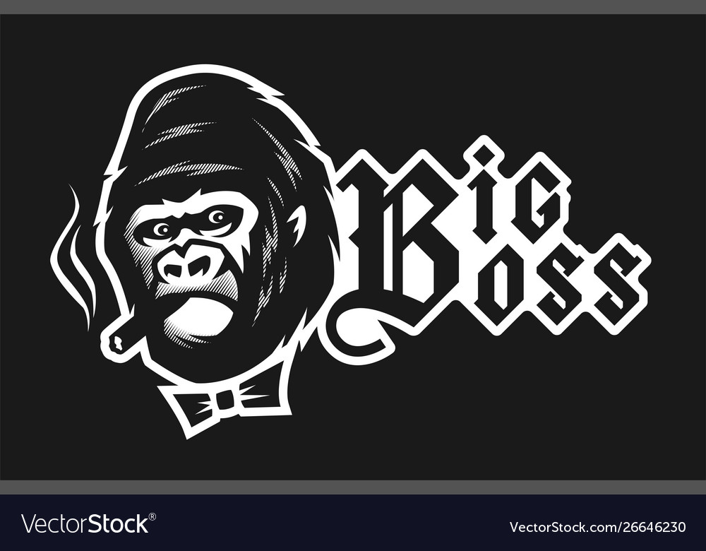 Big boss angry gorilla with a cigar on a dark
