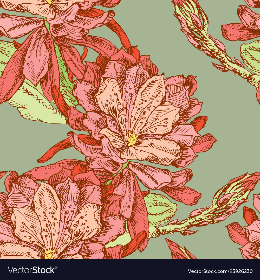 Seamless pattern of cactus flowers