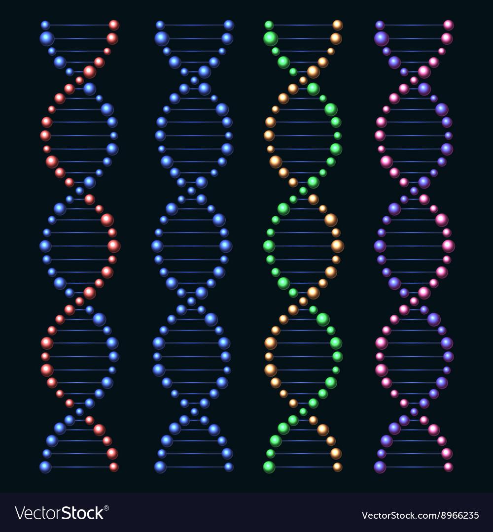 Glossy DNA Genome Molecules Set