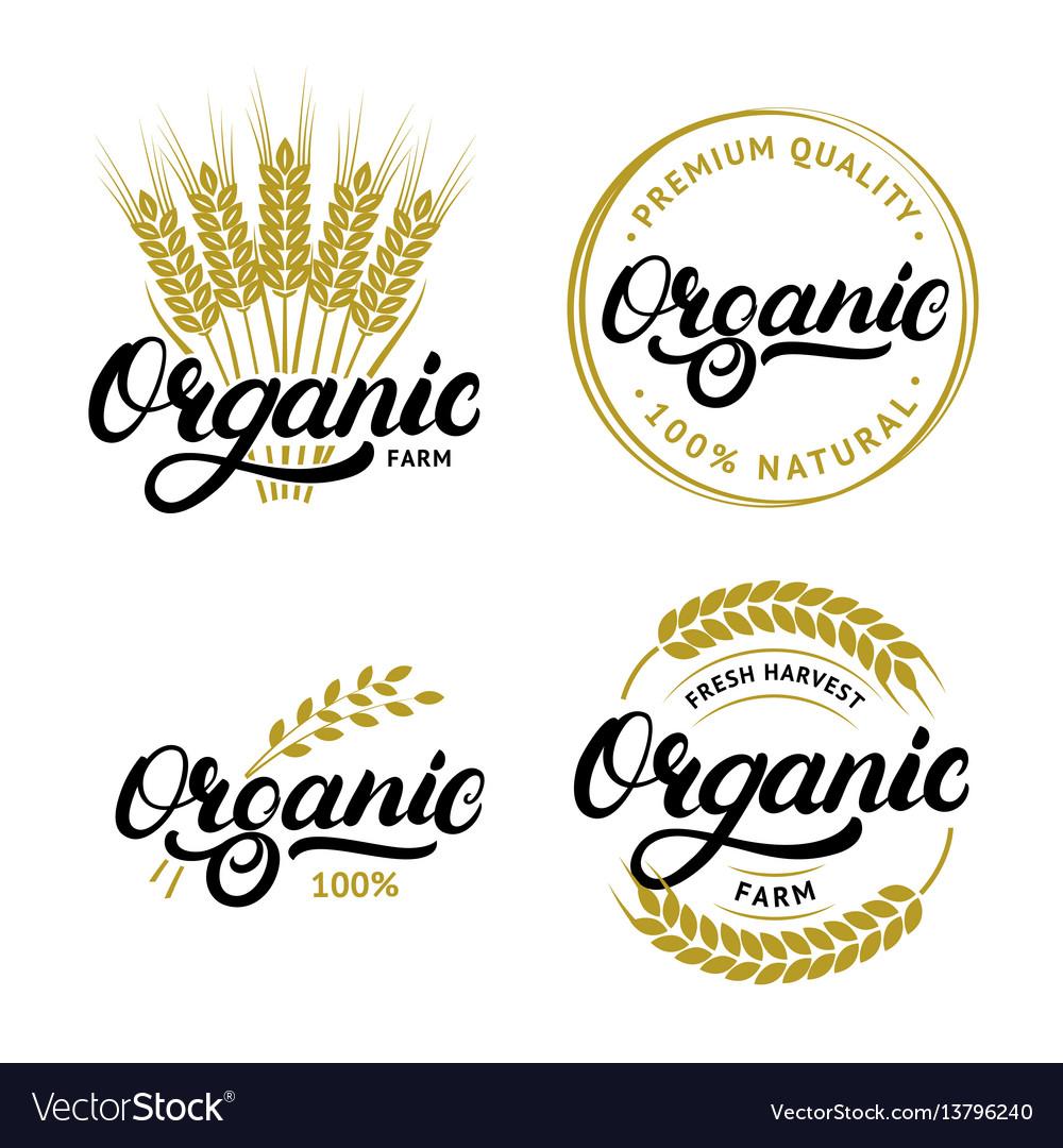 Set of organic hand written lettering logos labels