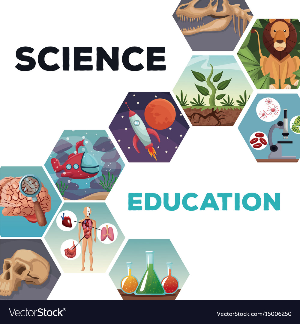 Science Design Project: Cover Page Science And Education With Icons World Vector Image