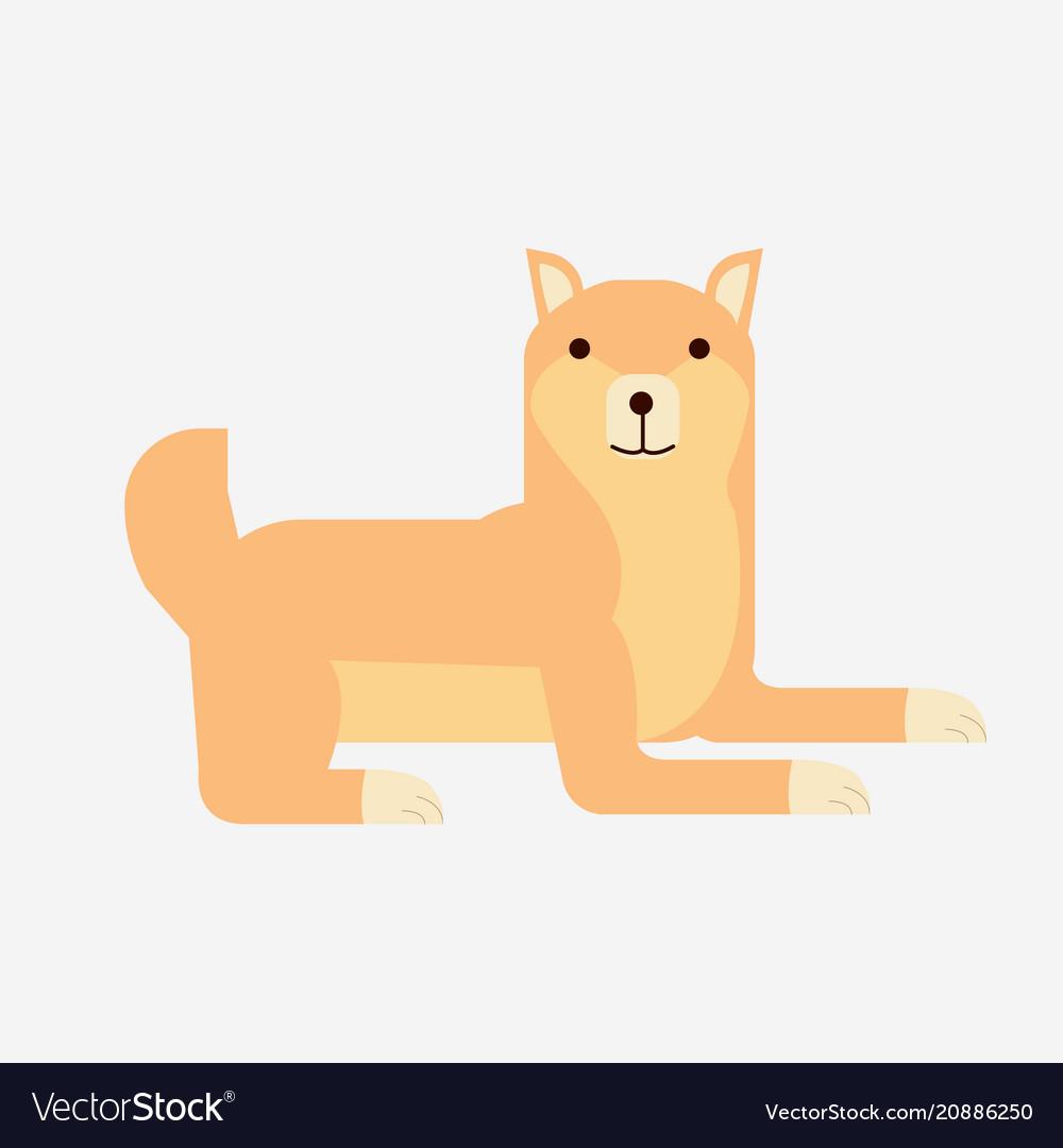 Cute cartoon japanese shiba inu dog flat shiba