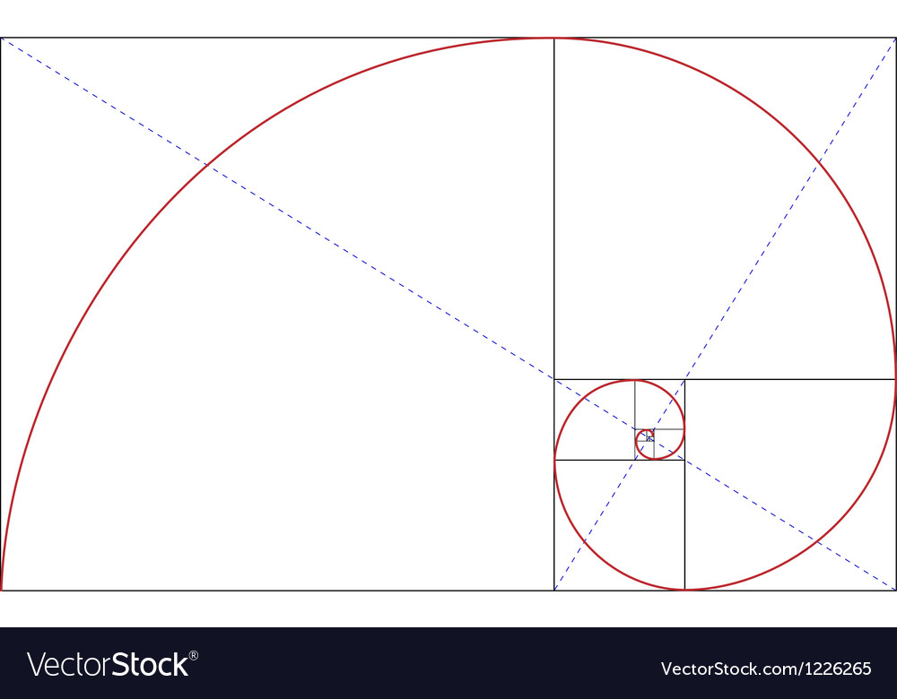 fibonacci golden ratio royalty free vector image rh vectorstock com golden ratio vector ai golden ratio vector download