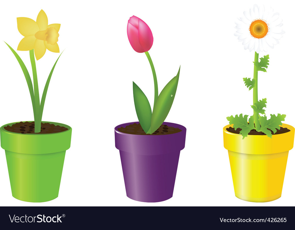 Free download of Flower IN Pot vector graphics and ...