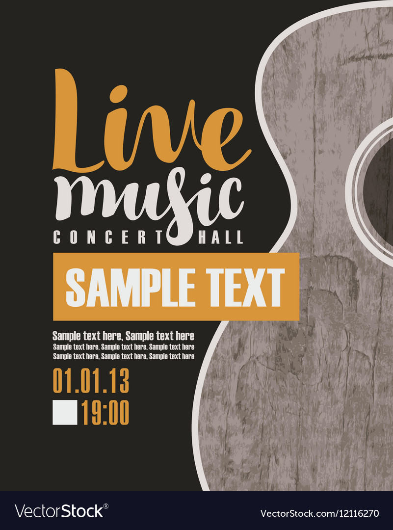 Concert live music with a guitar vector image