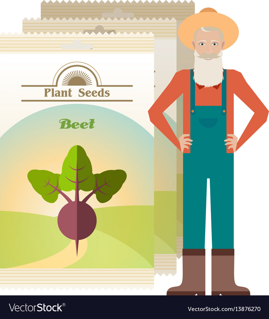 Pack of beet seeds icons