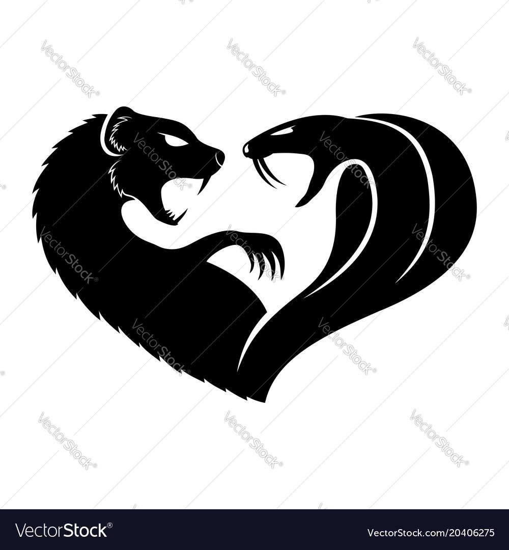Black mongoose and cobra