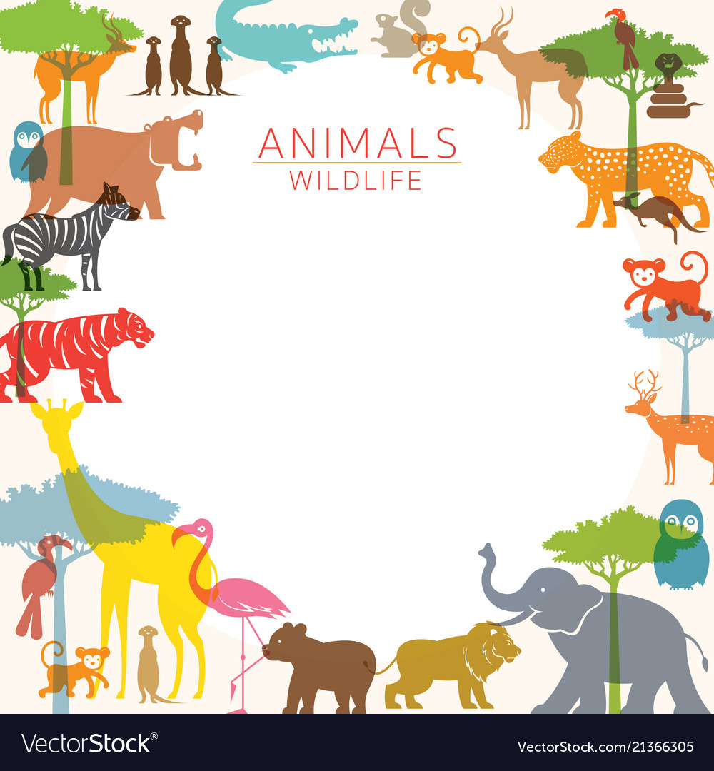 Group of wild animals zoo frame Royalty Free Vector Image