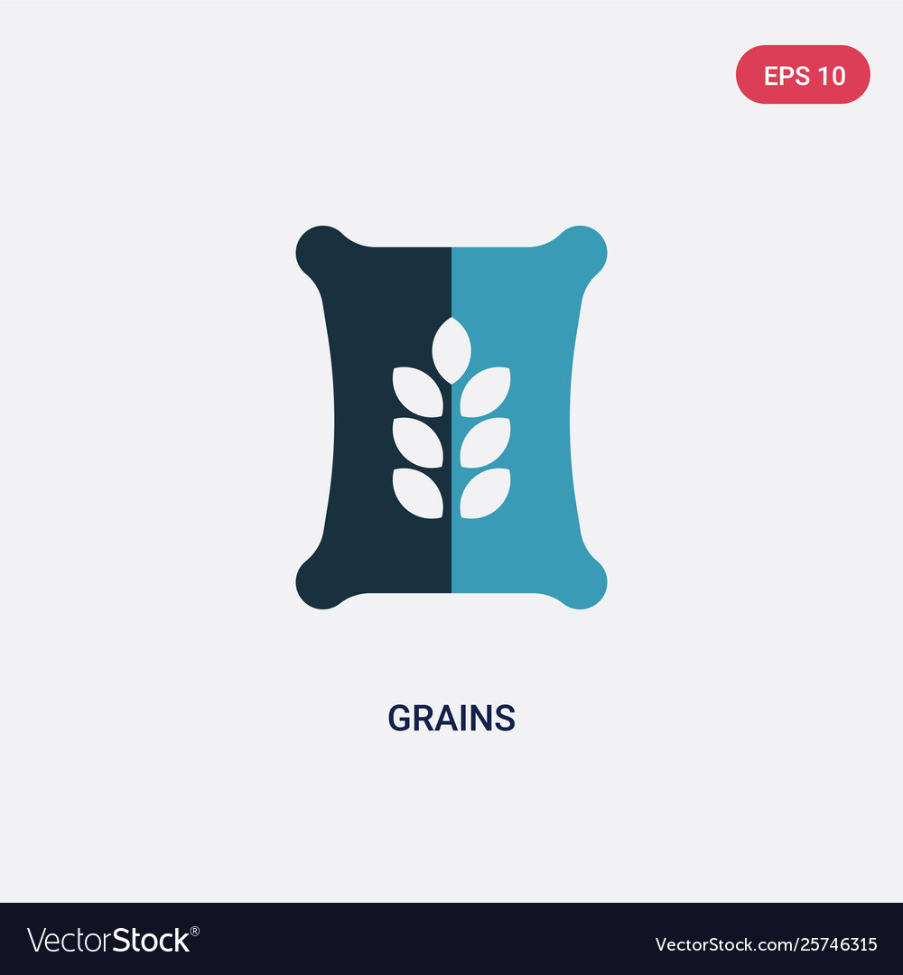 Two color grains icon from nature concept