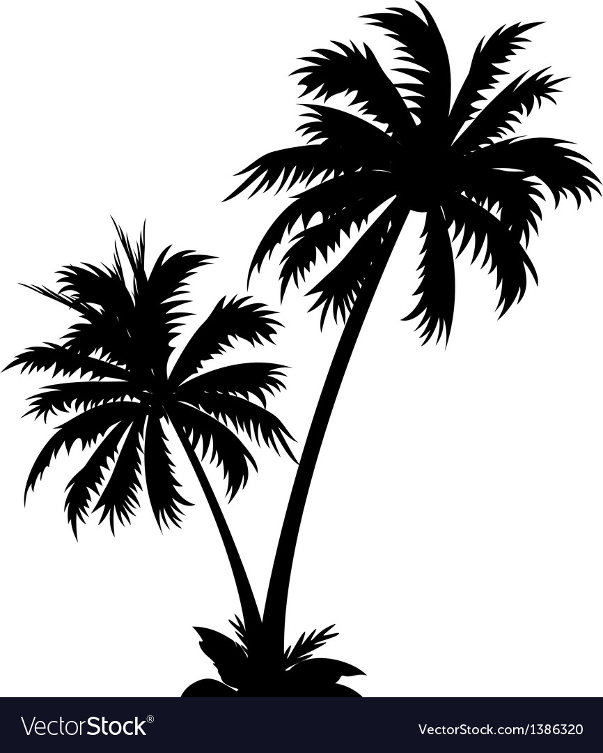 icon palm tree royalty free vector image vectorstock rh vectorstock com palm tree vector clipart palm tree vector free
