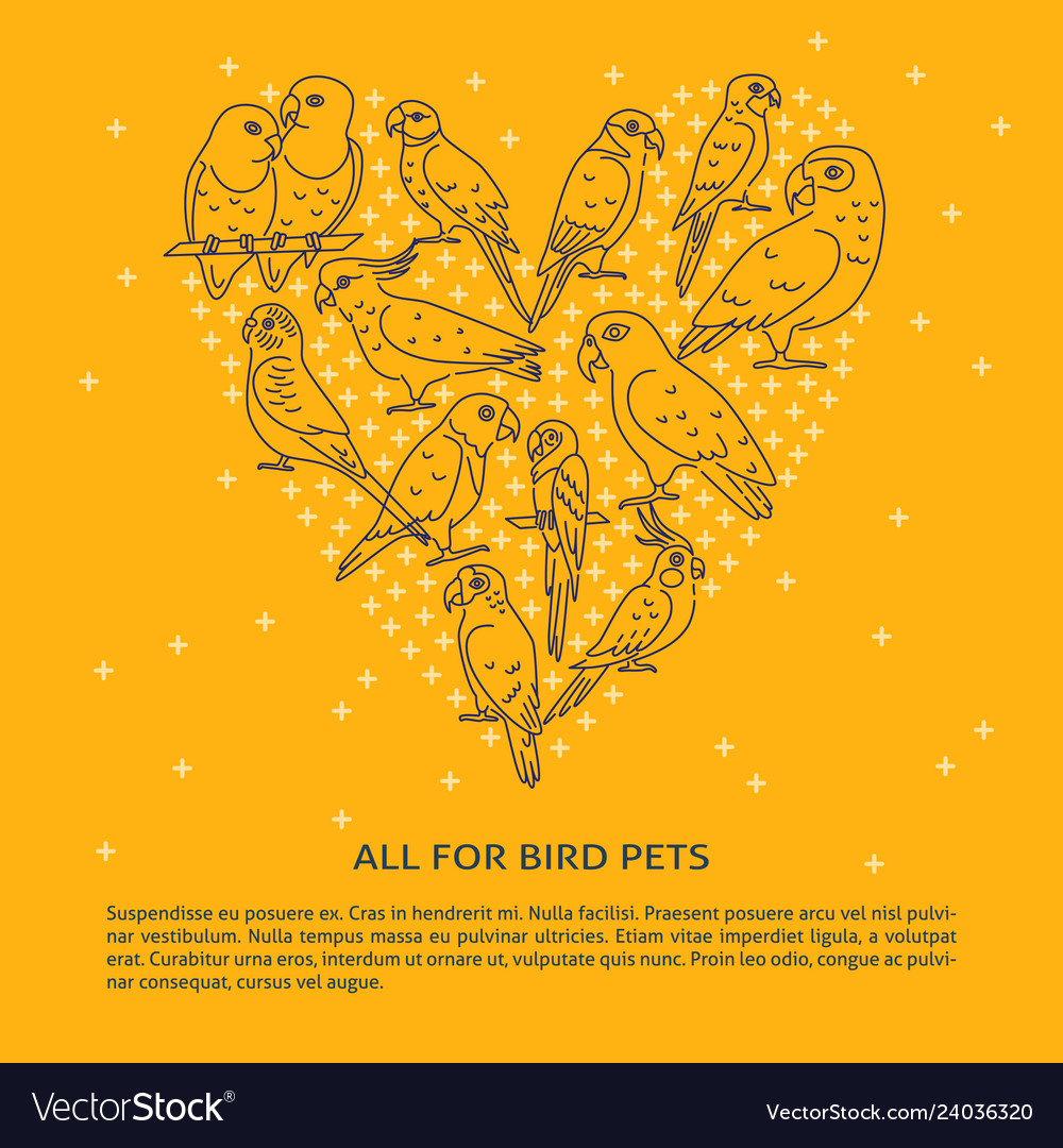 Pet Shop Banner With Parrot Icons In Line Style Vector Image