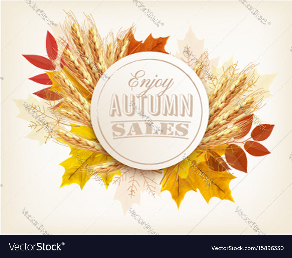 Autumn sales banner with colorful leaves and