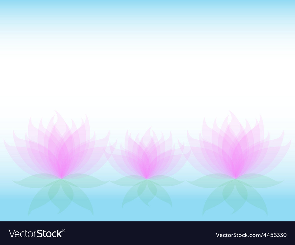 Soft waterlily card