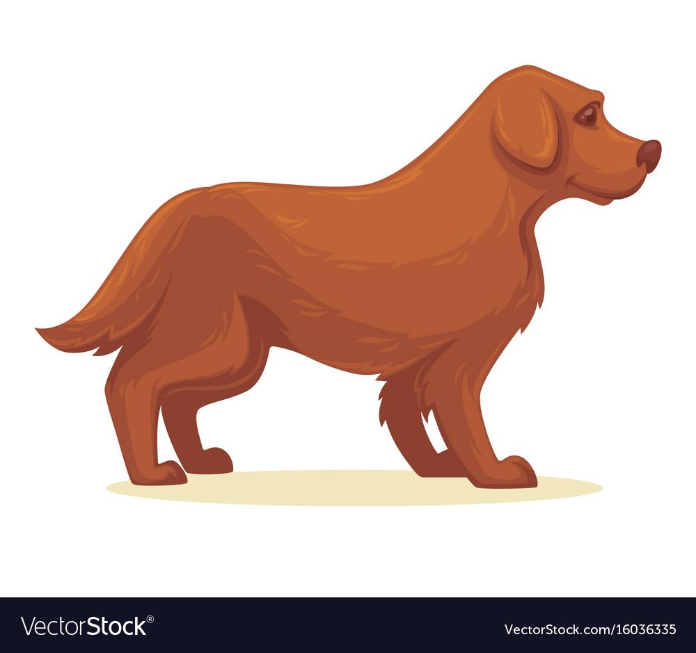 Cartoon dog isolated