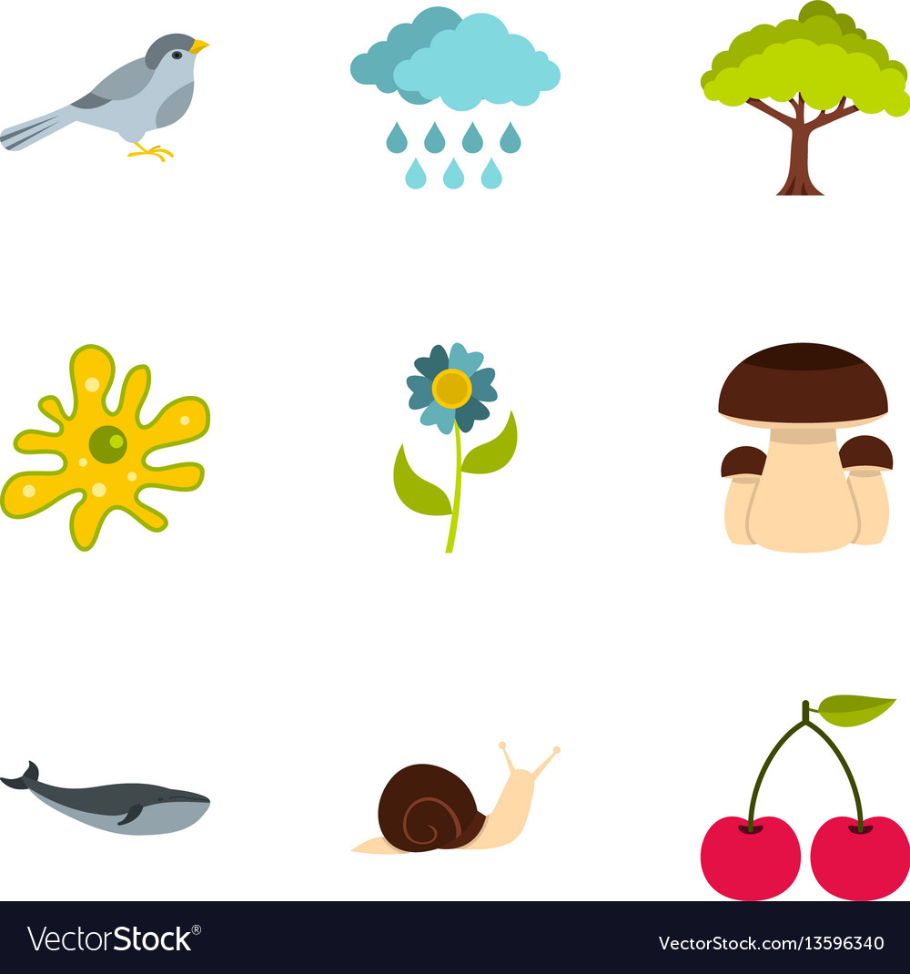 Summer nature icons set flat style vector image