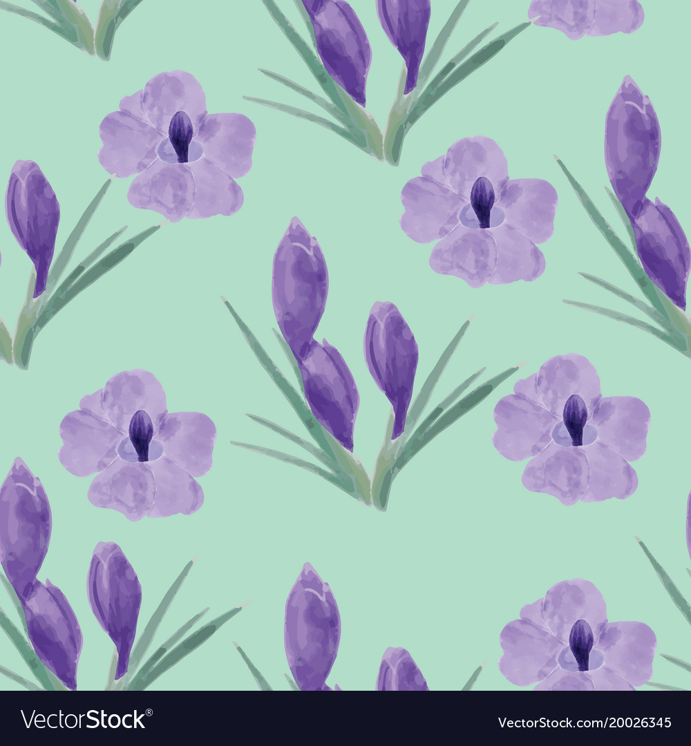 Beautiful orchid violet and crocuses flowers vector image izmirmasajfo