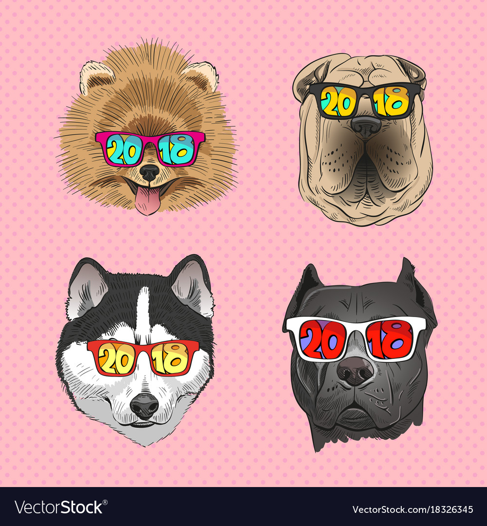 Dog wearing sunglasses year of the dog