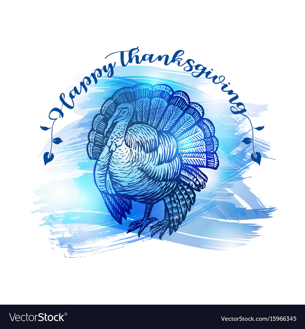 Hand drawn sketch turkey natural turkey