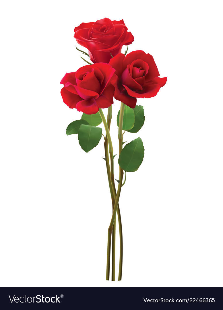 Bouquet of roses isolated on white realistic 3d