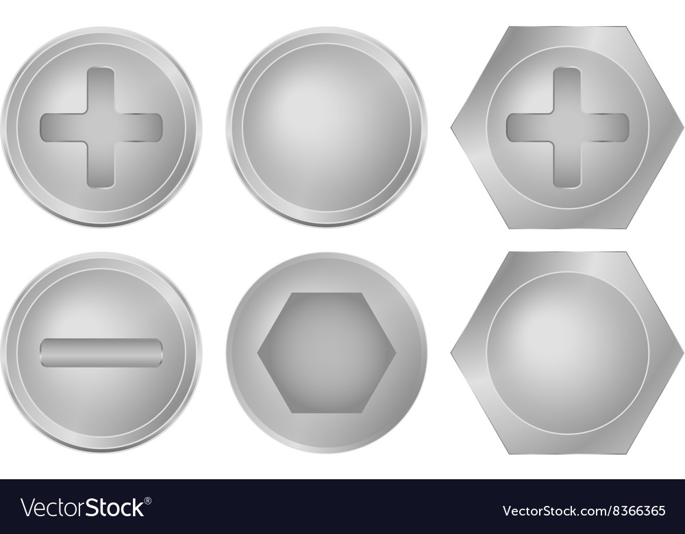 Set of metal screws bolts and rivets vector image