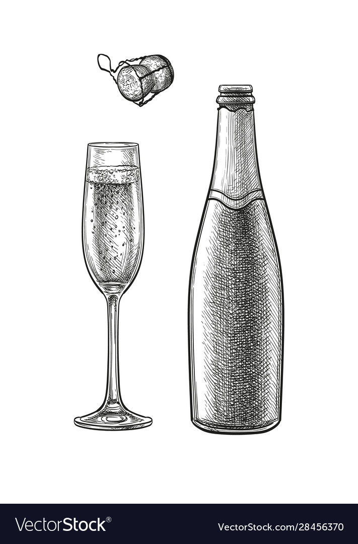 Ink sketch champagne