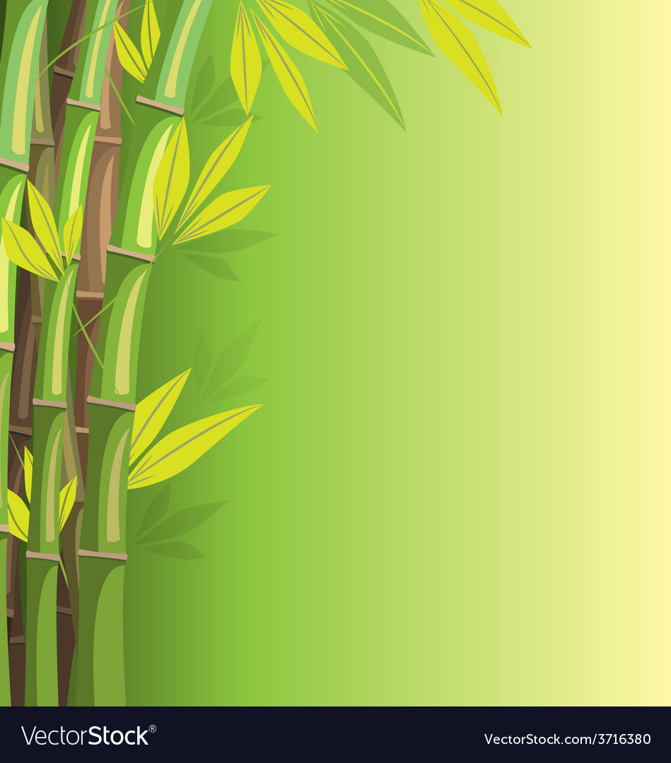 Green Bamboo On Background Royalty Free Vector Image