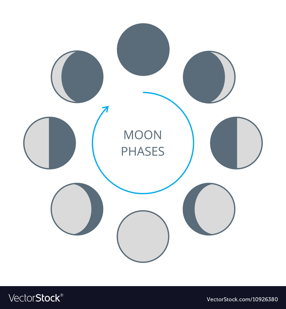 moon phases diagram worksheet choice image