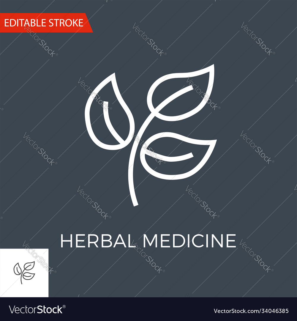 Herbal medicine icon vector