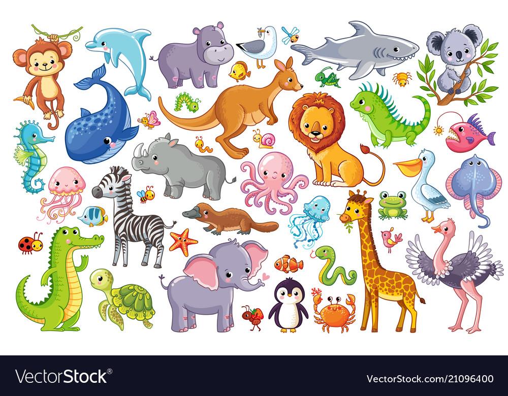 Set with animals