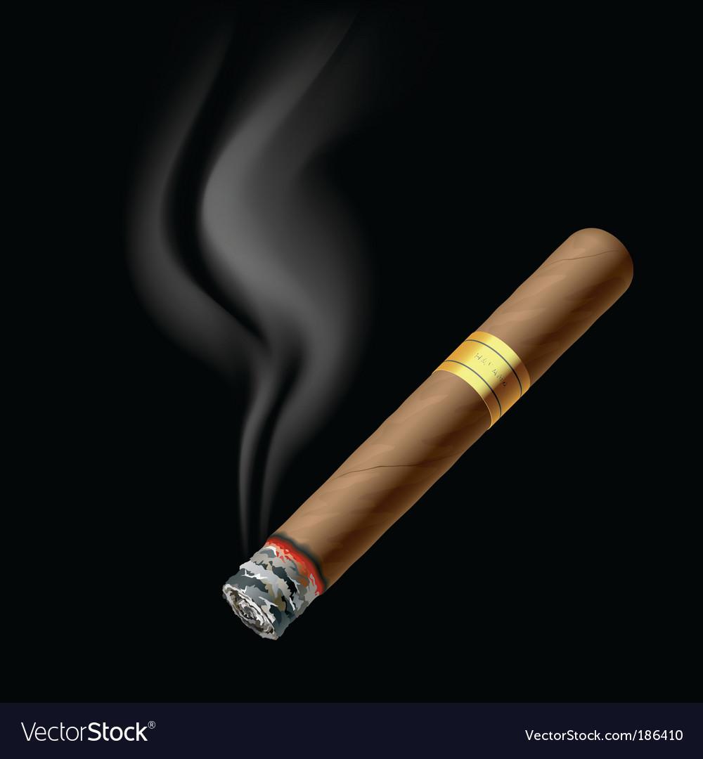 Smoldering cigar vector image