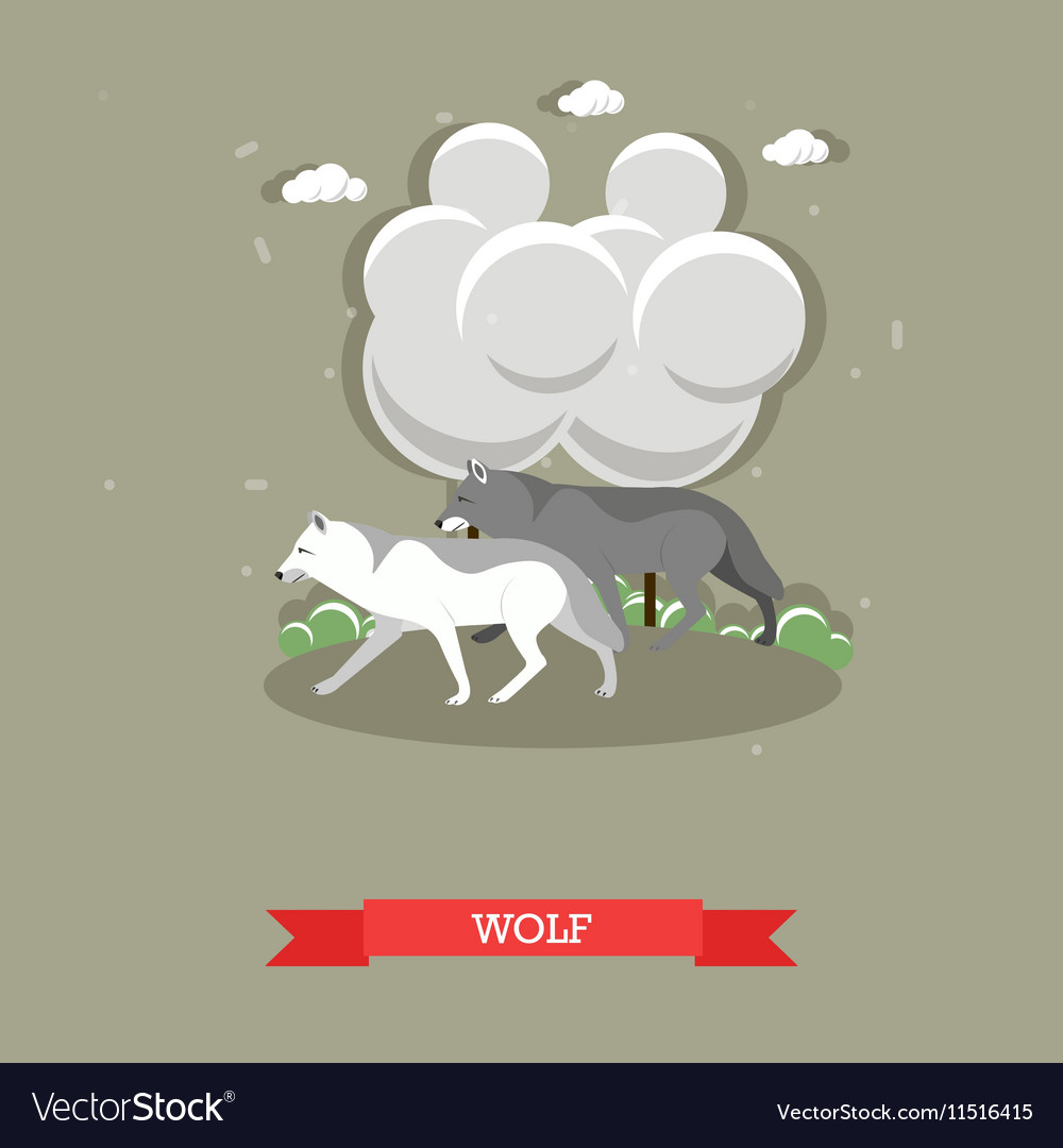 Two wolves walking in a forest - stock vector image