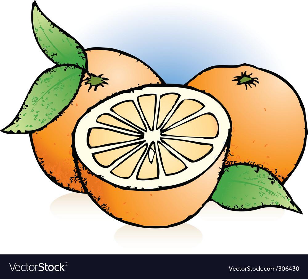 Oranges sketch