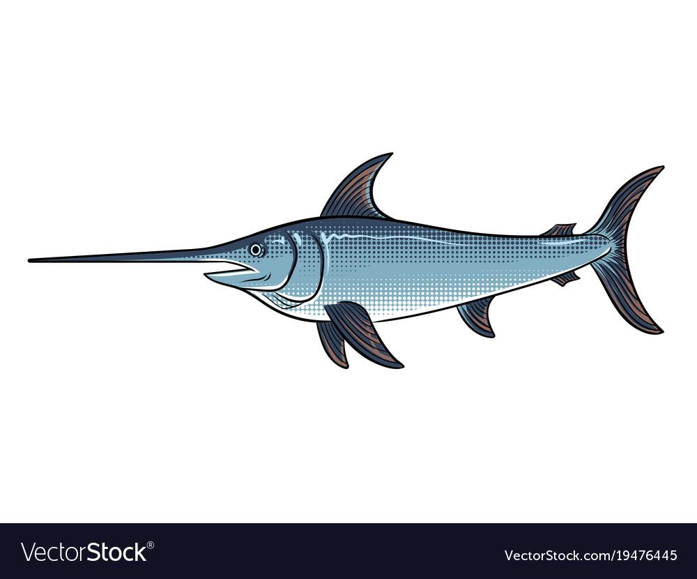 Swordfish pop art