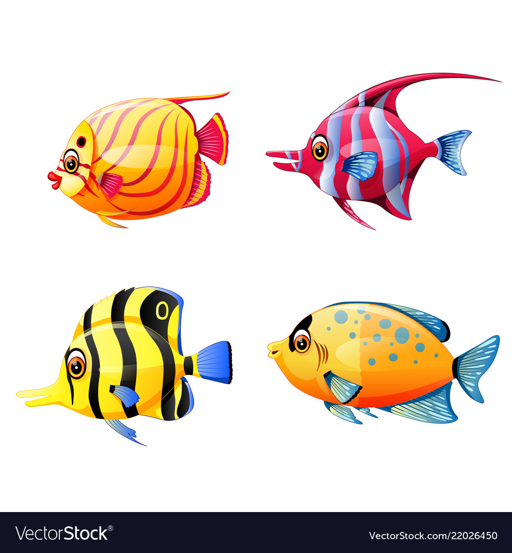 Collection of the little sea fish