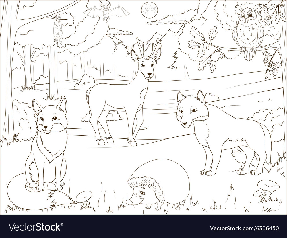 46+ Coloring Book Pictures Of Animals Best HD