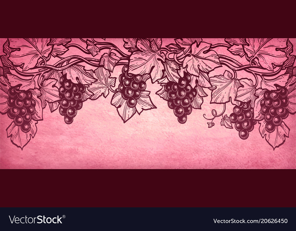 Hand drawn of grapes