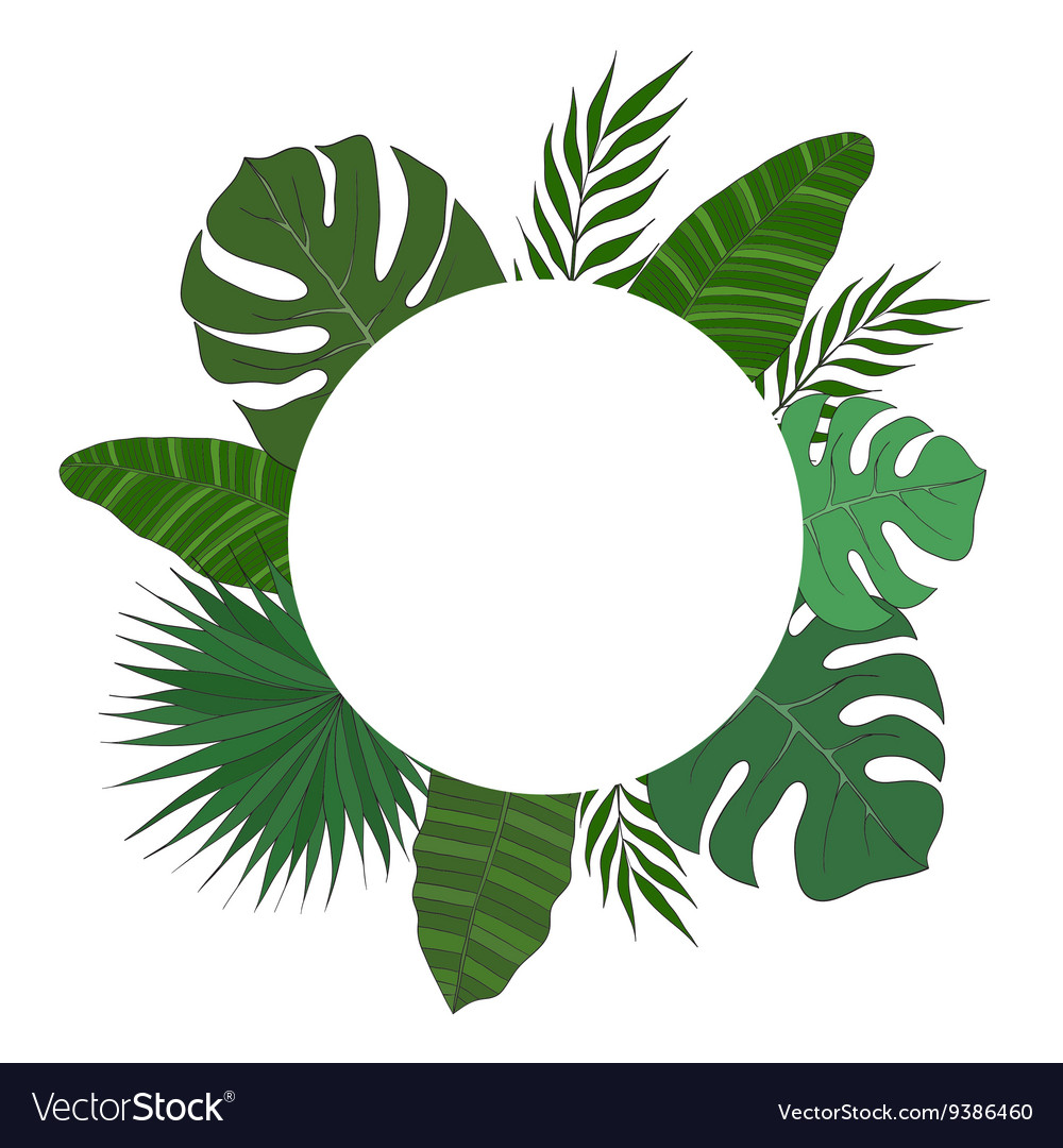 Round Frame Palm Tree Leaves Tropical Card Or Vector Image Tropical frames design will be useful for your greeting card, invitation designs, graphic designs and your designs decorations.featuresai, eps& jpg. vectorstock