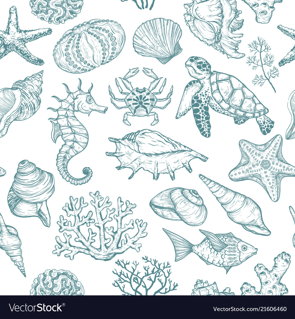 Seamless pattern with sketch of seal ocean life