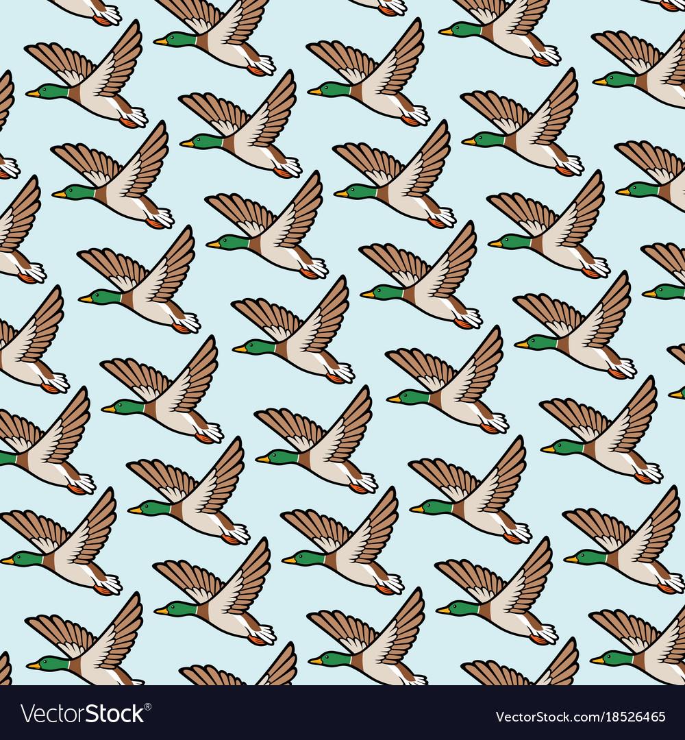Background pattern with mallard duck flying